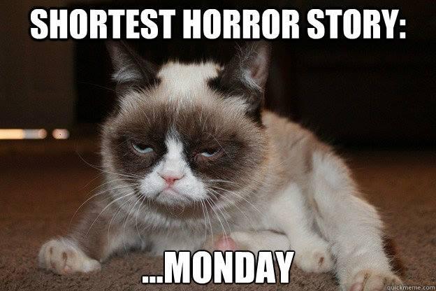 monday-grumpycat